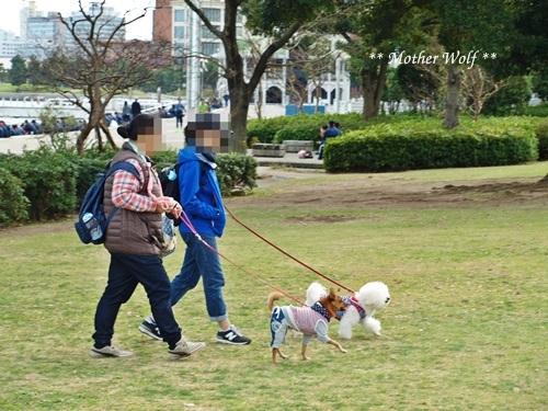第23回マザーウルフ遠足 横浜レポート_e0191026_22401705.jpg