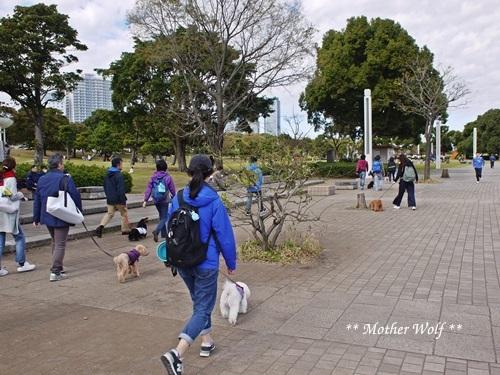 第23回マザーウルフ遠足 横浜レポート_e0191026_22473912.jpg