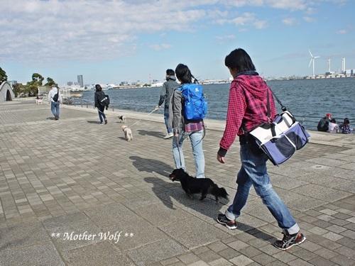 第23回マザーウルフ遠足 横浜レポート_e0191026_22502391.jpg