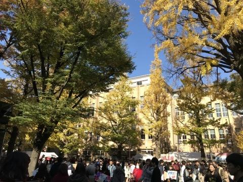 11月26日 文化祭_a0317236_08351929.jpeg