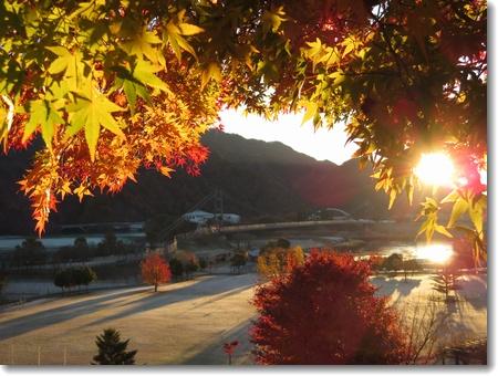 秋から冬へ_c0147448_23443312.jpg