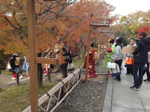 京都紅葉だより 舞妓はん_b0153663_15472223.jpeg