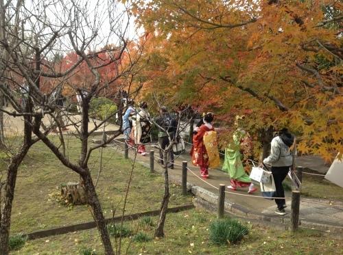 京都紅葉だより 舞妓はん_b0153663_15490382.jpeg