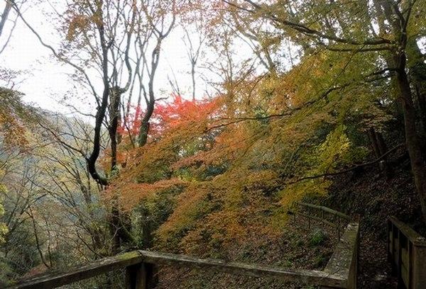 遊びの山、紅葉の絶景スポット_b0102572_22133582.jpg