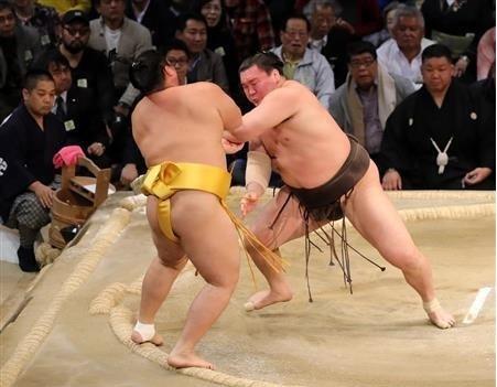 大揺れでも白鵬40度目の優勝、ラグビー日本代表惜しい引き分け_d0183174_09142553.jpg