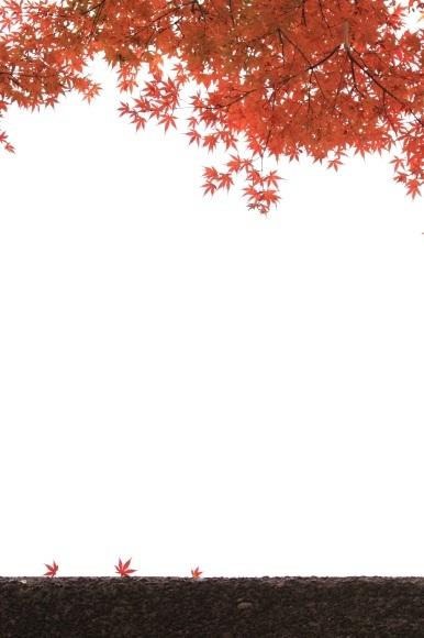 f0350585_00084032.jpg