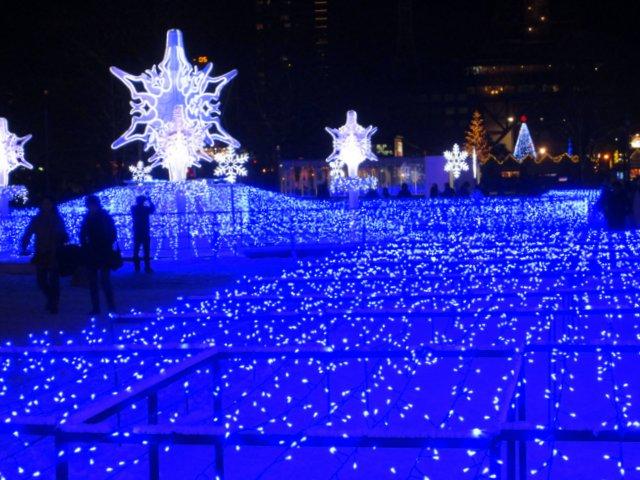 2017年11月26日(日)  冬の夜のきらめき(1)イルミネーション(1)_a0345007_11115864.jpg