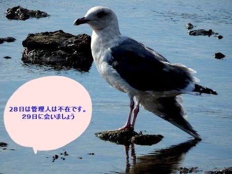 b0352112_16574248.jpg
