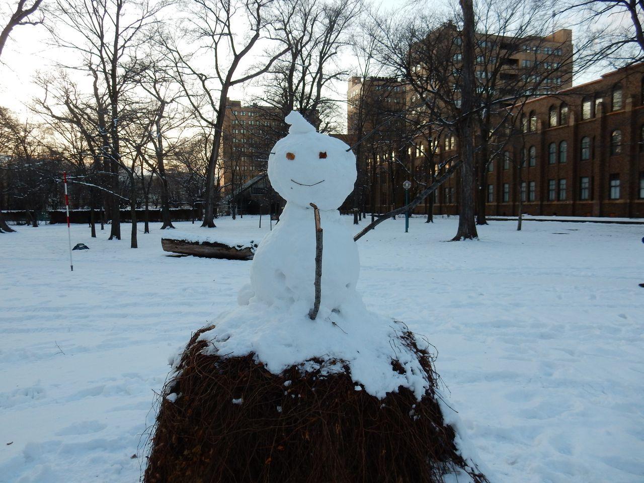 ほぼ真冬日の下、理学部へ_c0025115_22350673.jpg