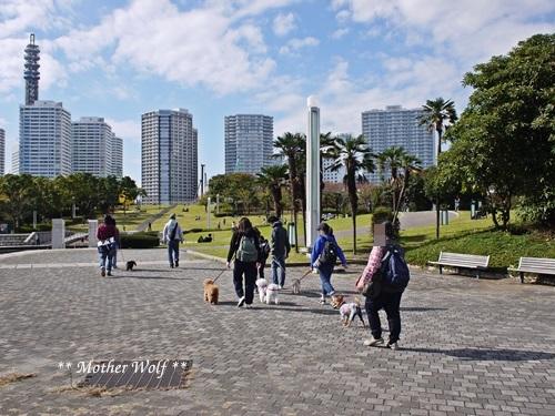 第23回マザーウルフ遠足 横浜レポート_e0191026_18122989.jpg
