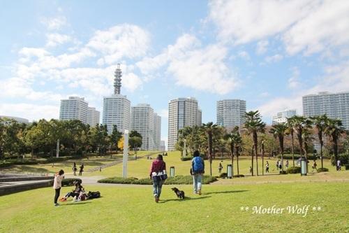 第23回マザーウルフ遠足 横浜レポート_e0191026_18152235.jpg