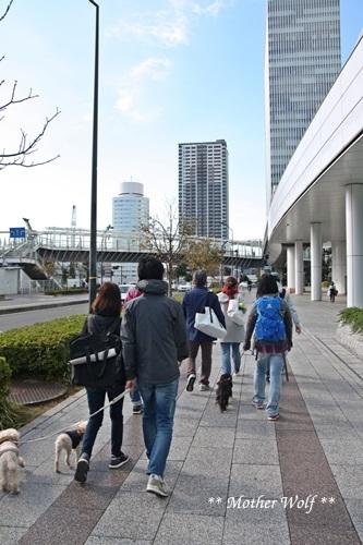 第23回マザーウルフ遠足 横浜レポート_e0191026_18353539.jpg