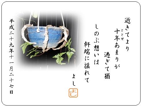 e0033229_18491172.jpg