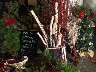クリスマスツリーの点灯式_c0353373_21423214.jpg
