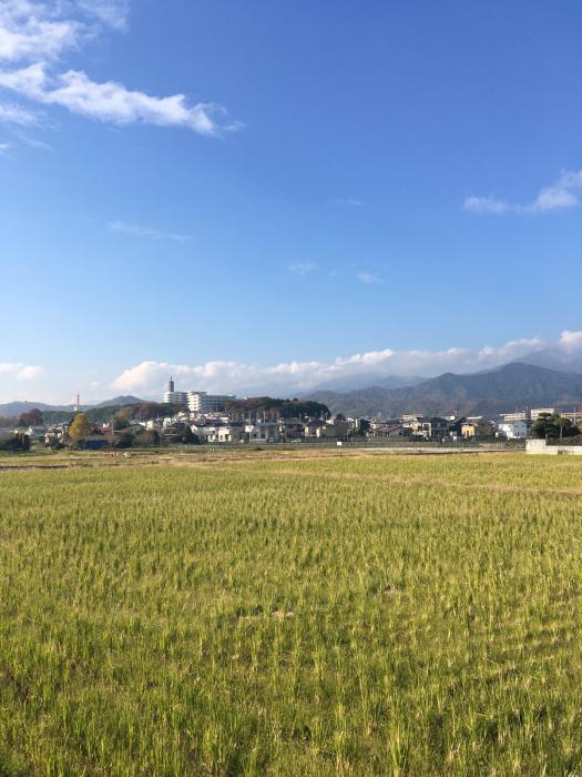 東海大学湘南キャンパス_f0087202_22301996.jpg
