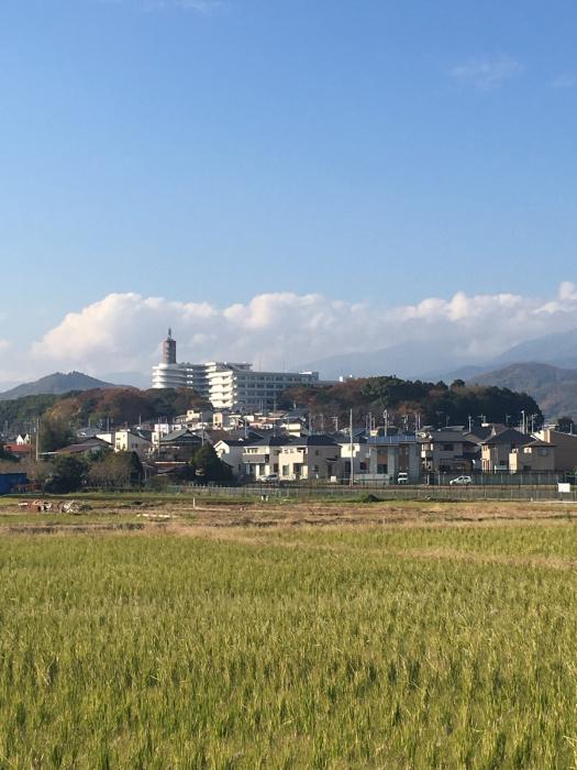 東海大学湘南キャンパス_f0087202_22302507.jpg