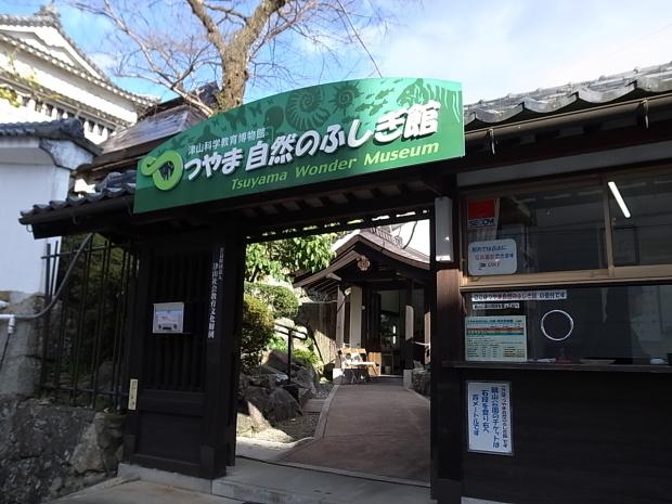 つやま自然のふしぎ館~誕生寺_f0197703_11143797.jpg
