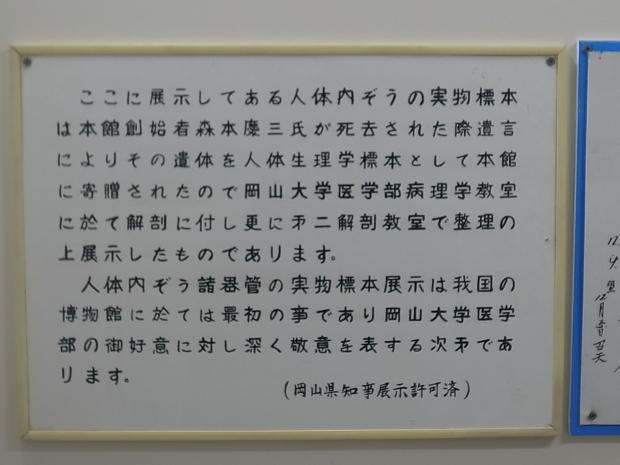 つやま自然のふしぎ館~誕生寺_f0197703_11174505.jpg