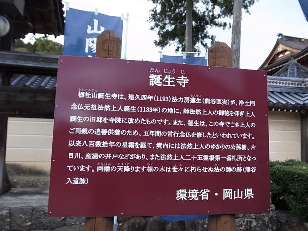 つやま自然のふしぎ館~誕生寺_f0197703_11243282.jpg