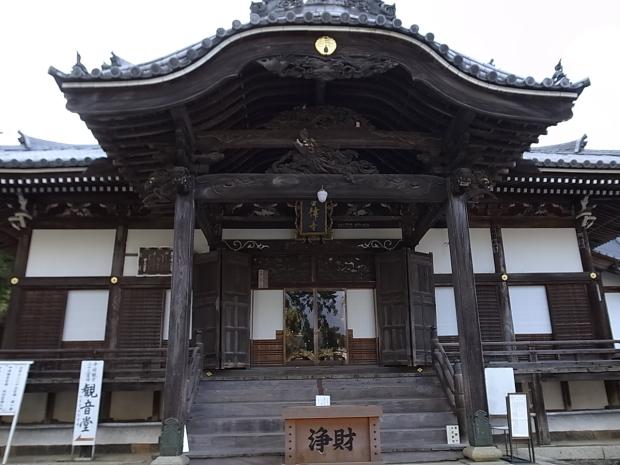 つやま自然のふしぎ館~誕生寺_f0197703_11284046.jpg