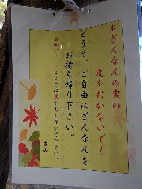 つやま自然のふしぎ館~誕生寺_f0197703_11311429.jpg