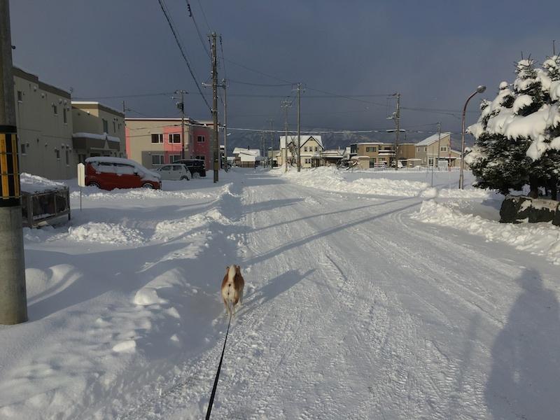 根雪かな_e0227023_10180268.jpg