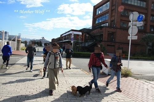 第23回マザーウルフ遠足 横浜レポート_e0191026_10370875.jpg