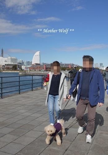 第23回マザーウルフ遠足 横浜レポート_e0191026_10441624.jpg