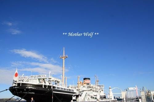 第23回マザーウルフ遠足 横浜レポート_e0191026_11560369.jpg