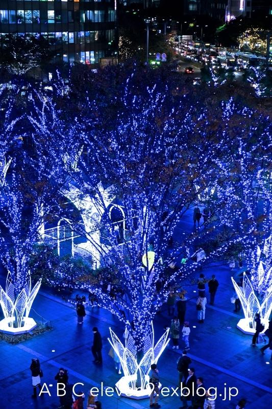 光の街・博多 2017_f0315034_14420602.jpg