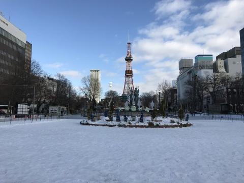 11月27日 札幌の雪_a0317236_06112366.jpeg