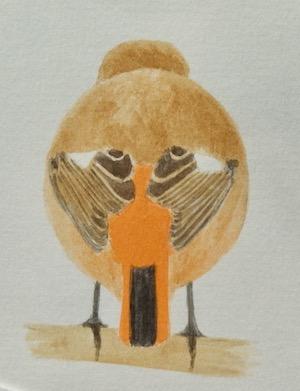 #野鳥スケッチ 『ジョウビタキ』_a0083553_7245742.jpg