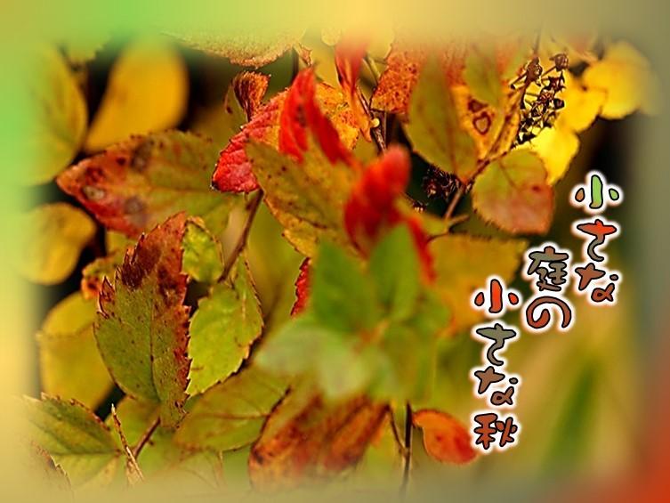 f0214467_09112915.jpg