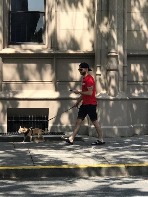 Dog in NYC_c0108595_22340132.jpg