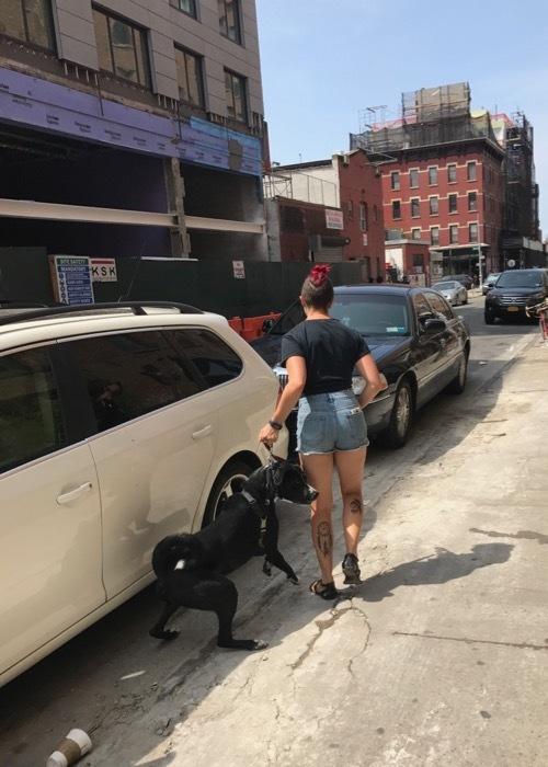 Dog in NYC_c0108595_22575701.jpg
