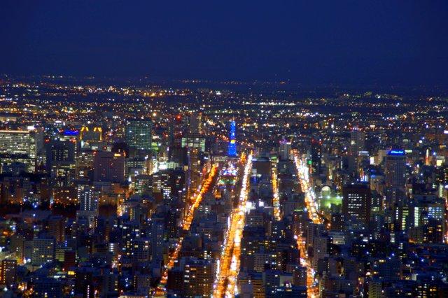 2017年11月27日(月)  冬の夜のきらめき(2)  大倉山_a0345007_1132661.jpg