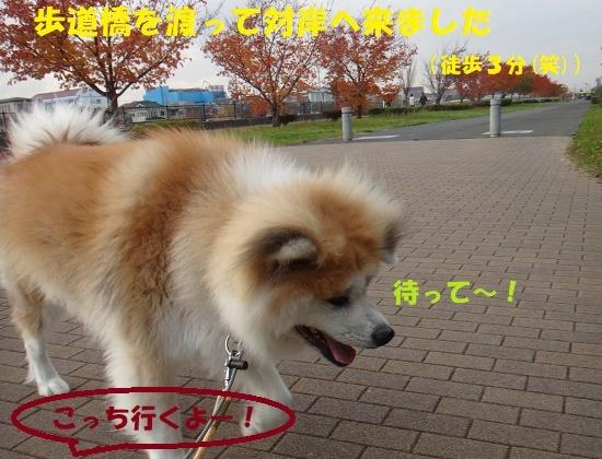 f0121712_07302526.jpg