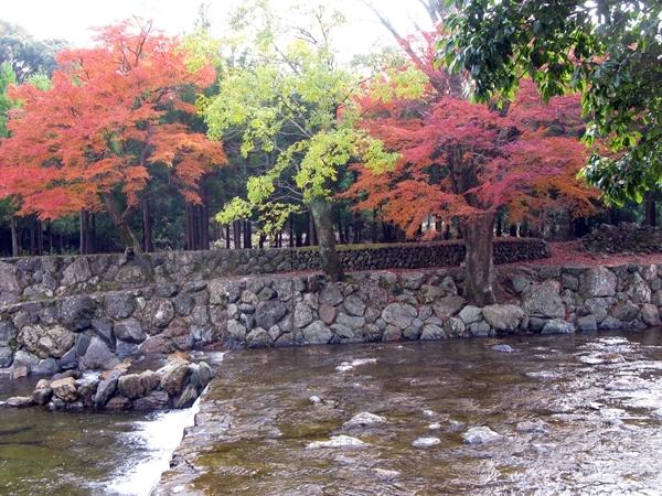 五十鈴川散策 その1_f0129726_18381876.jpg