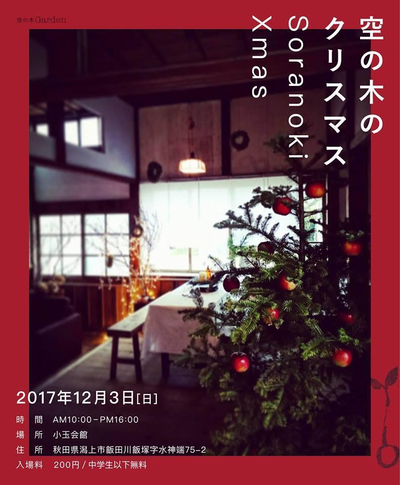 空の木のクリスマス_a0233551_12175106.jpg