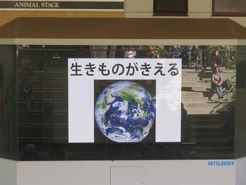 「君は地球をまもる木工屋さんⅡ」_e0272869_18095827.jpg