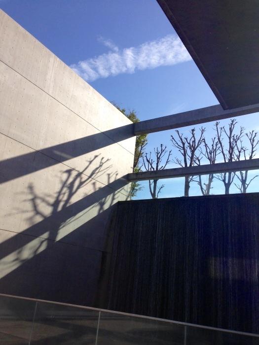 秋の植物園と陶板名画の庭   京都_c0100195_09404110.jpg