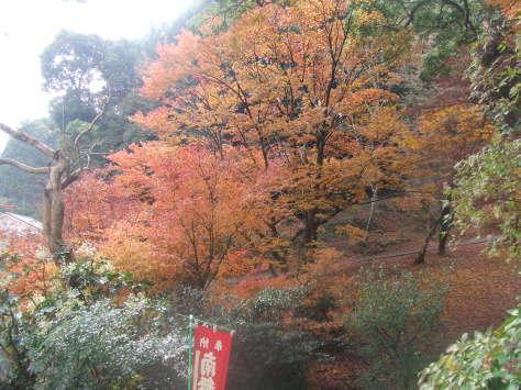 東山寺の紅葉_c0086070_15092400.jpg