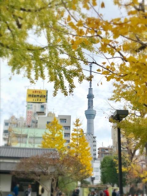 東京お出かけ感動 最終編_c0165589_15342557.jpg