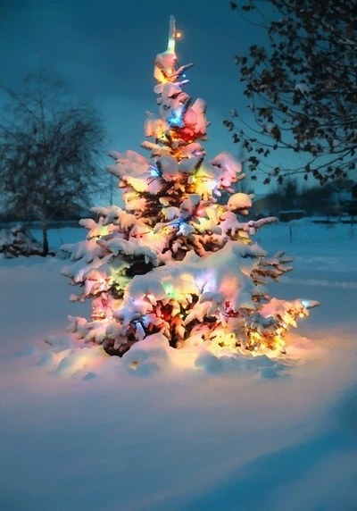 12月のお知らせ♡_e0131324_08065301.jpg