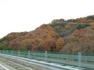 秋のバス旅行  外出レク_e0163042_20421550.jpg