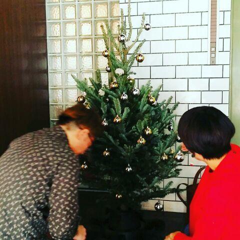 クリスマスツリーを準備して・・・_a0272765_20563425.jpg