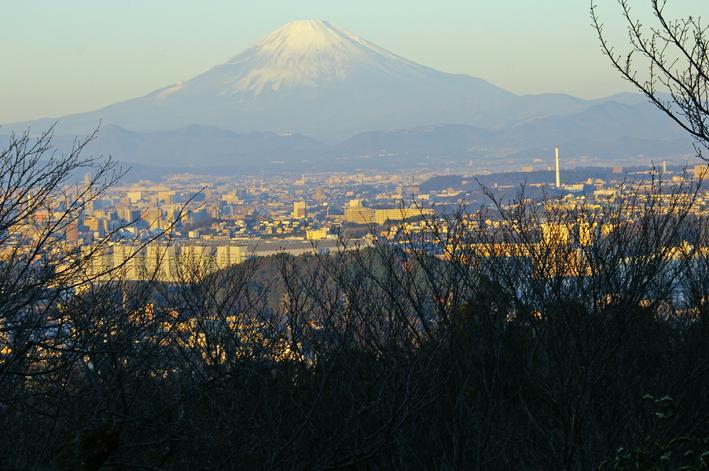 12・3「紅葉の北鎌倉、六国見山と切通しを歩く」_c0014967_941547.jpg