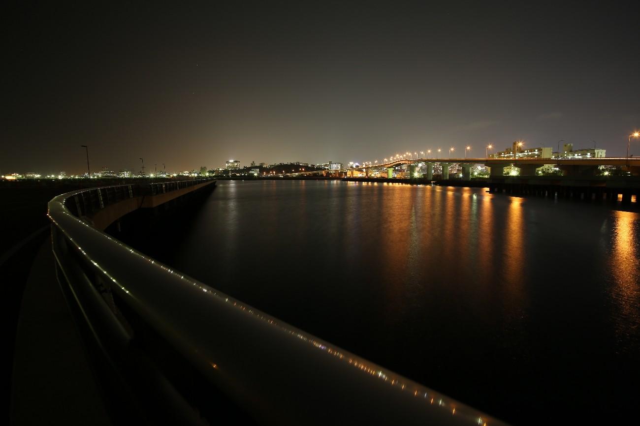 那覇市内でも海岸は星が見えそうだが_a0095470_23384502.jpg