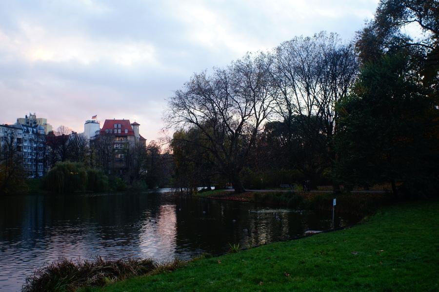 11/13 前の湖畔散歩_c0180686_13075403.jpg
