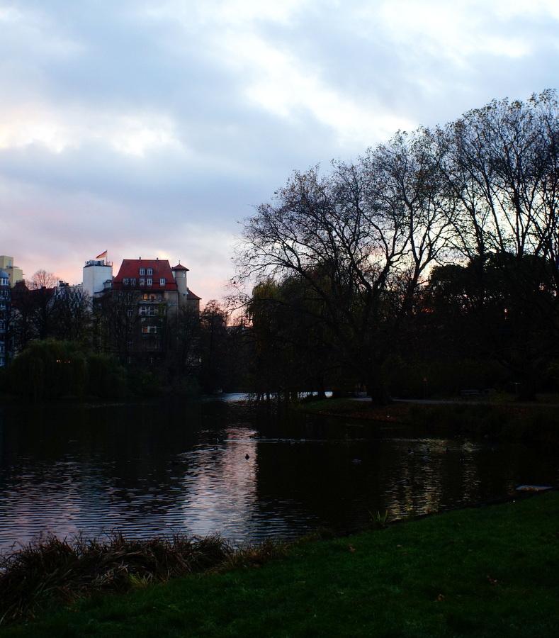 11/13 前の湖畔散歩_c0180686_13084579.jpg